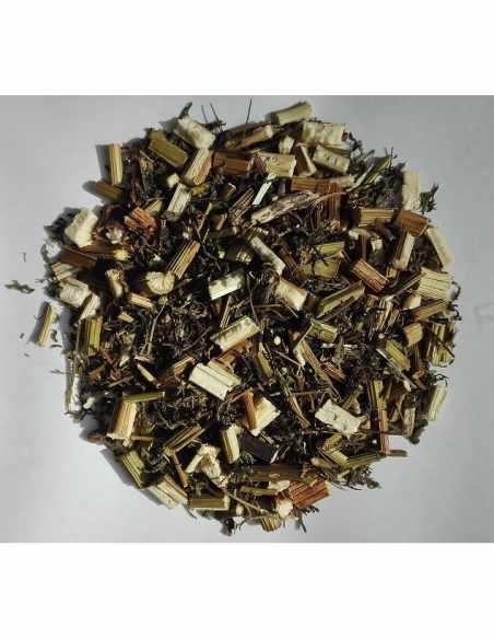 Artemisia annua ( Bylica roczna ) ziele