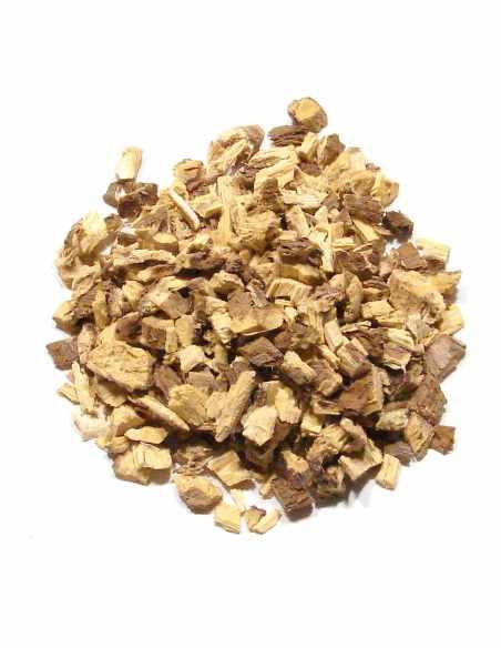 Lukrecja - korzeń grubocięty