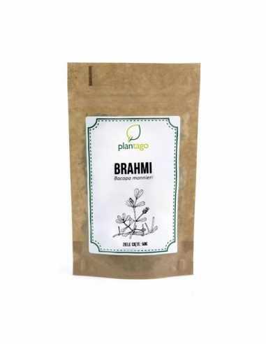 Bacopa monnieri (Brahmi)