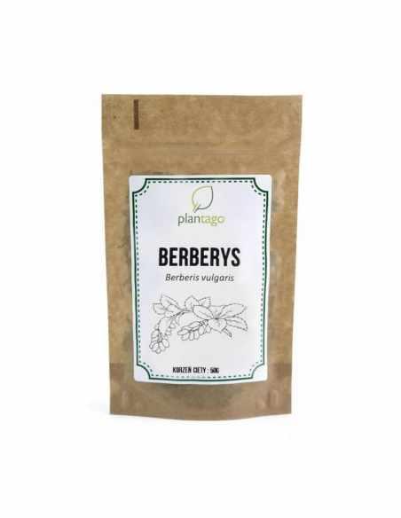 Berberys - korzeń cięty 50g