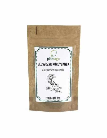 Bluszczyk kurdybanek - ziele 50g