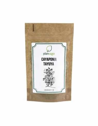 Tayuya cayaponia ( korzeń cięty )
