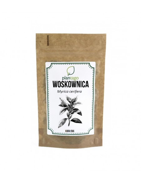 Woskownica amerykańska (Myrica cerifera) kora korzenia