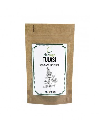 Tulasi ( Bazylia święta ) - liść cięty 100g