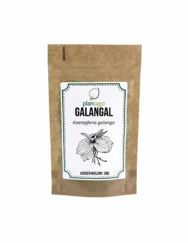 Galangal - korzeń mielony 50g