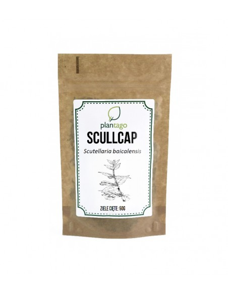 Tarczyca bocznokwiatowa ( Scullcap ) ziele cięte