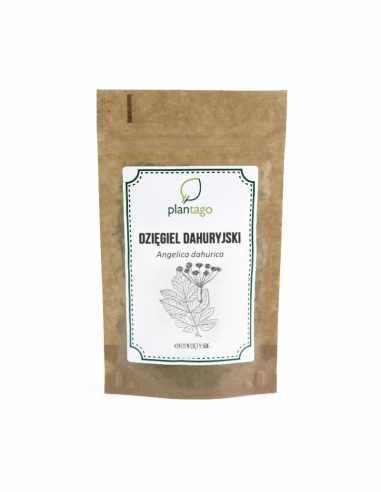 Dzięgiel dahuryjski (Angelica dahurica)
