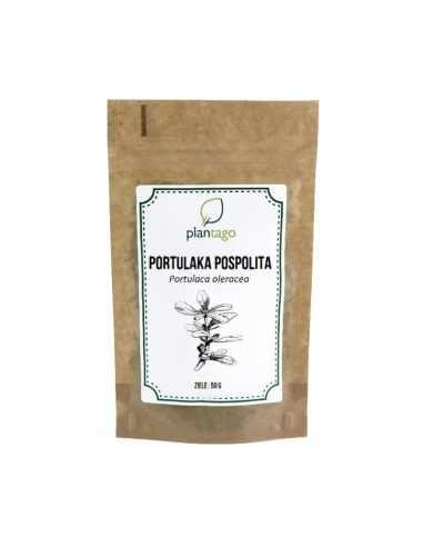 Portulaka pospolita (Portulaca...