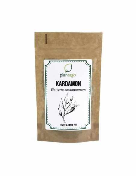 Owoc kardamonu w łupinie (Elettaria cardamomum)