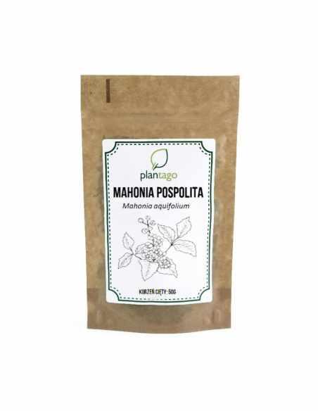 Mahonia pospolita (Mahonia aquifolium) korzeń cięty