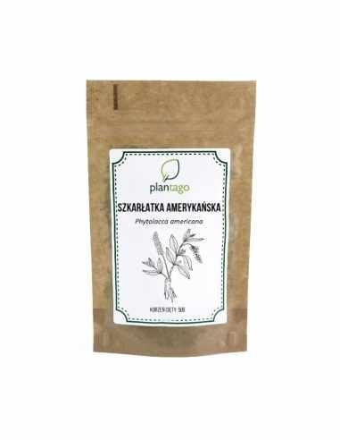 Szkarłatka (Phytolacca) korzeń cięty